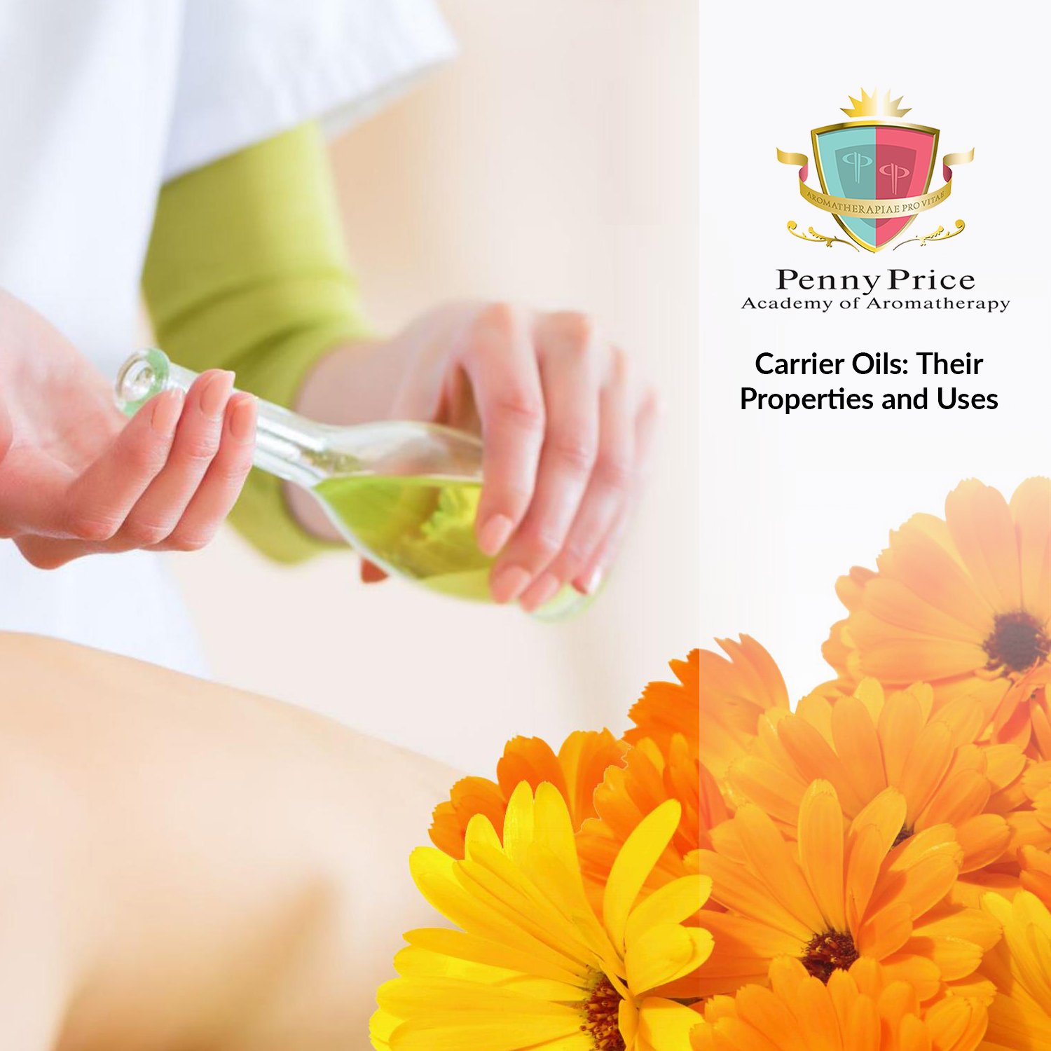 aromatherapy_course_carrier_oils_properties_and_uses
